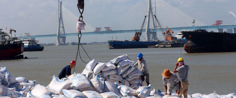 Inquiète d'une crise alimentaire, la Chine fait des provisions