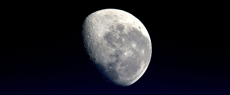 L'humanité a-t-elle introduit (par erreur) la vie sur la Lune?