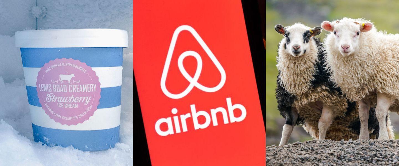 Le futur du frigo, Airbnb à bout de souffle, la bonne idée de PETA, une journée sur korii.